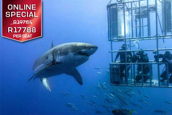 sport-cape-town-helicopters-tours-flights-shark-cage-diving-2019