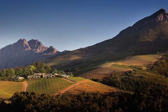 Cape Winelands helicopter tour